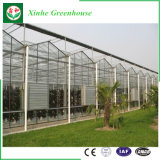 Serra di vetro della struttura di Venlo di alta qualità da vendere