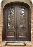 Двойник двери утюга Wrougth обеспеченностью роскошный застеклил конструкции
