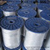 중국 강철 물가 및 강철 코어에 의하여 직류 전기를 통하는 철강선 밧줄