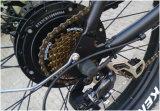 밀리는 모터를 가진 세계에 있는 최고 자전거 상점