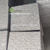 pavé martelé par Bush gris-clair d'allée de granit de 20X20cm
