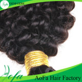 cabelo humano brasileiro Kinky de qualidade superior do Weave do cabelo 7A Curly