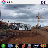 Costruzione economica della struttura d'acciaio (SSW-248)