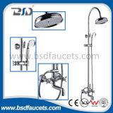 Комплект ливня ванны конструкции санитарного подходящий ливня ванны установленный классицистический