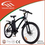 Alloy en aluminium 500W Motor 48V Mountain E Bike