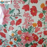 PPGI con alta calidad y diseño más reciente de Shandong