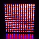 El espectro de ahorro de energía Azul Rojo 14W Lámpara de crecimiento de la hidroponía