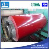Prepintado galvanizado Hoja de acero revestido de color en rollos