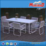 Polywood屋外の食事Set+Polywoodの家具
