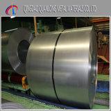 SGCC Sgch DX51d холодной катушки оцинкованной стали