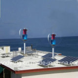 1000W de Ce Goedgekeurde Turbogenerator van de Wind voor het Gebruik van het Huis