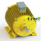 수력 전기 사용을%s 낮은 Rpm 20kw 영구 자석 발전기