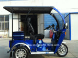 Tricycle handicapés avec un passager (DTR-12B)