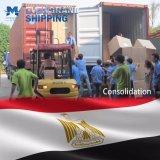 De concurrerende Overzeese Vracht van de Oceaan & van Egypte/Kaïro/Port Said/Alexandra/Sokhna