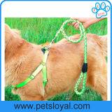 Uitrusting van de Hond van de Leiband van het Huisdier van de Levering van het Product van het Huisdier van Amazonië de Standaard Nylon