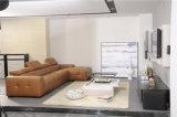 بيتيّ أثاث لازم [ركلينر] جلد أريكة نموذج 426