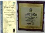 Galvaniserende Het Stempelen van de Staalplaat Vervangstukken met ISO9001: 2008