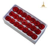 2~3cm 50 couleurs Grade a toujours Rose durable pour la décoration