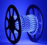 Luz de seqüência do LED SMD (3528)