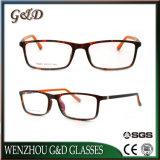 Het nieuwe Optische Frame T6001 van het Oogglas van Eyewear van de Glazen van de Stijl van de Manier Tr90
