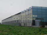 Venlo 유형 유리 온실을%s 제조 가격