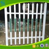 Rete fissa galvanizzata PVC per prato inglese o il giardino