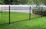 جميل كلاسيكيّة حديقة [ورووغت يرون] سياج مع بوابة