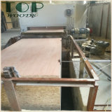 folheado Blockboard do Poplar de 4*8 6/9/12/15/18mm/do vidoeiro núcleo de Combi para a mobília/decoração
