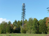 Camouflé en acier de l'arbre de la tour de télécommunications