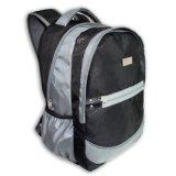 Large Capacity (BSA12301)에 있는 Outdoor 그리고 Sports를 위한 휴대용 퍼스널 컴퓨터 Backpack