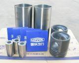 Le manchon de cylindre, piston, segment de piston, axe de piston de Lovol Pièces de Rechange Moteur