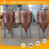 Bioreattore dell'acciaio inossidabile del fermentatore del cono