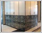Furnityre 문 또는 샤워실을%s 로고/Desings를 가진 유리를 인쇄하는 유리제 실크스크린 인쇄