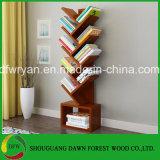 Estante China Fabricante de alta qualidade
