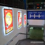 Große Fall-Wand-Fahnen-Bildschirmanzeige LED Lightbox, haltbarer Haustier-Film