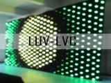2mx4m (P20) Rideau de vidéo/LED LED Vision le rideau (LUV-LVC)