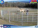 Iarde usate saldate galvanizzate del bestiame dei comitati del bestiame (FLM-CP-009)