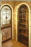 Singoli portelli del ferro all'ingrosso con vetro Tempered