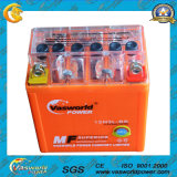 12V Gel Motorcycle Battery Gel 100% Type Hot Sale Model Motorcycle Battery Gel 12V