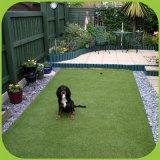 애완 동물을%s Drainge 좋은 시스템 인공적인 잔디