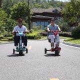 2017 drei Rad-faltbarer Roller für alte Leute mit Invaliditäten