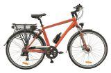 A mediados de 250W para adultos Motor verde de la ciudad Bicicleta eléctrica
