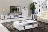 Basamento del LED TV con 2 cassetti in alta mobilia del salone di lucentezza (DS-190)