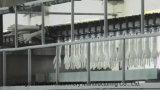 Автоматический перевод фар вещевого ящика из латекса для продажи Blx машины
