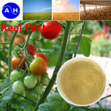 Cálcio do quelato do ácido aminado para o ácido aminado orgânico do adubo cálcico da planta