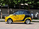 Малый автомобиль электрического автомобиля высокоскоростной с 2 местами