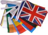 선전용 폴리에스테 다중 국제적인 국가 만국기 깃발