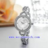 La montre personnalisent la montre d'acier inoxydable (WY-039B)