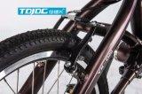 صيانة منخفضة ناعم عمليّة تتبّع درّاجة يطوي درّاجة مصغّرة لأنّ نساء