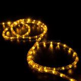 Illuminazione di paesaggio LED di illuminazione di striscia della corda del diametro 11mm LED